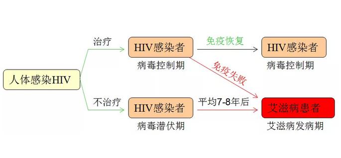 人体感染HIV示例表