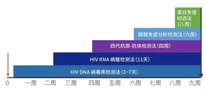 HIV DNA、HIV RNA、抗原、抗体等感染证据的时间