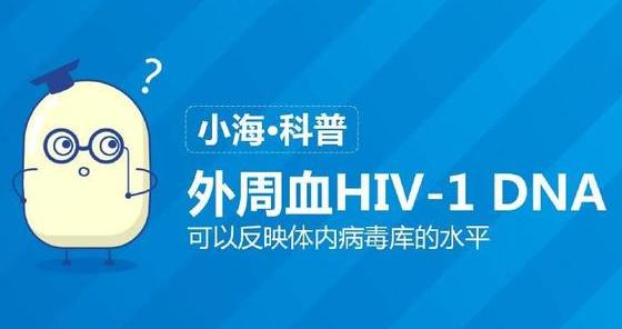 外周血HIV-1 DNA可以反映体内病毒库的水平