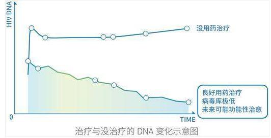 治疗与没治疗的DNA变化示意图