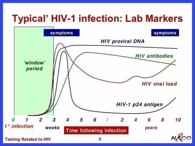 理论上最早可在暴露后的7-10天(隐蔽期过后)就明确是否发生感染