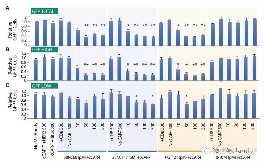 靶细胞杀伤和HIV基因表达水平的关系