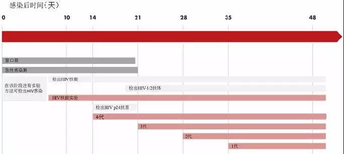 图 2 HIV 抗体、p24 抗原及核酸检测的检出时间