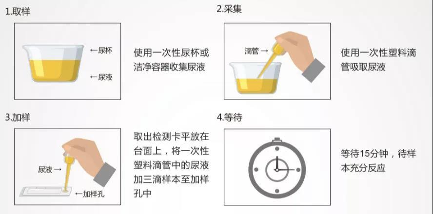 图 3 尿液自我检测操作过程