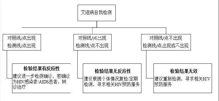 图 5 艾滋病自我检测流程