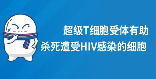 超级T细胞受体有助杀死遭受HIV感染的细胞