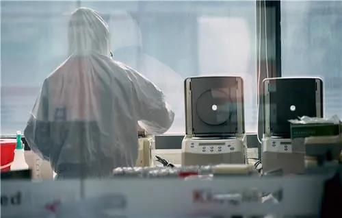 实验室在进行核酸检测